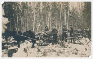 metsanduse ühistegevuse algus 1920 metsaühistu