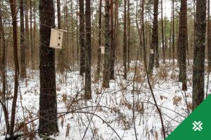 pesakastid lindudele Metsaühistu