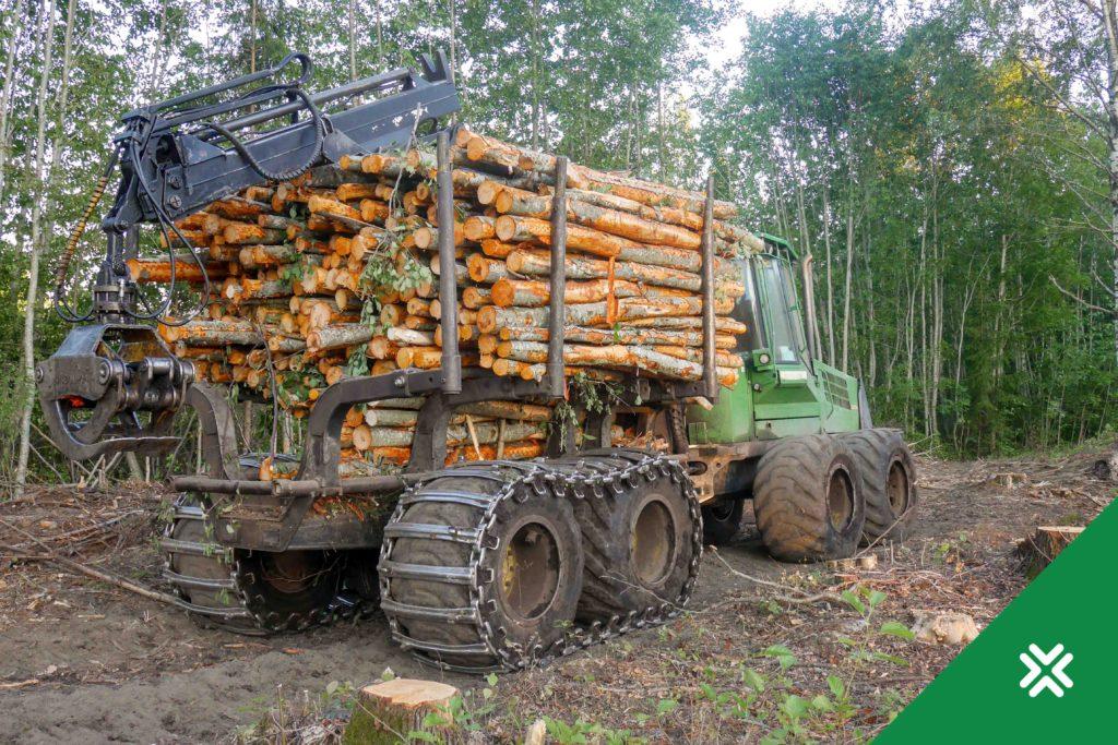 Puidu hind soosib metsaomanikke!