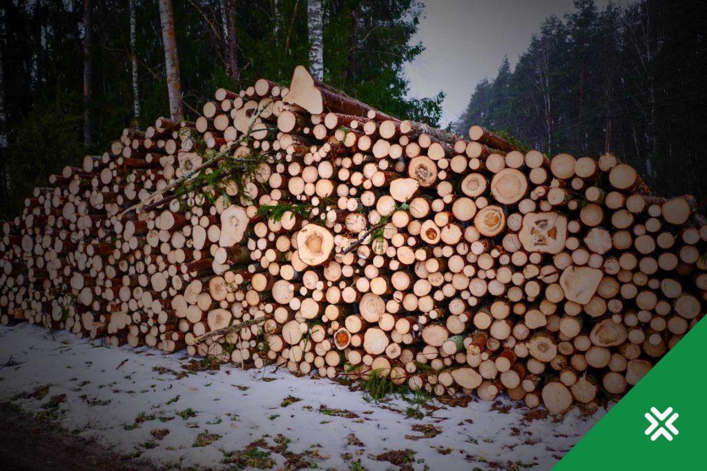 Metsa või puidu müügil kasuta Metsaühistu teenuseid