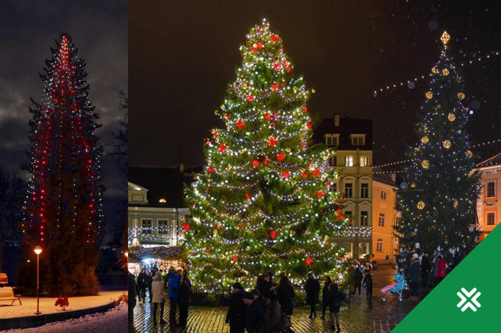 Jõulupuud_2017-2