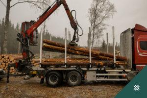 metsa raie puidu teekond metsaühistu