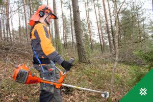 metsameetme toetus 2018 metsaühistu