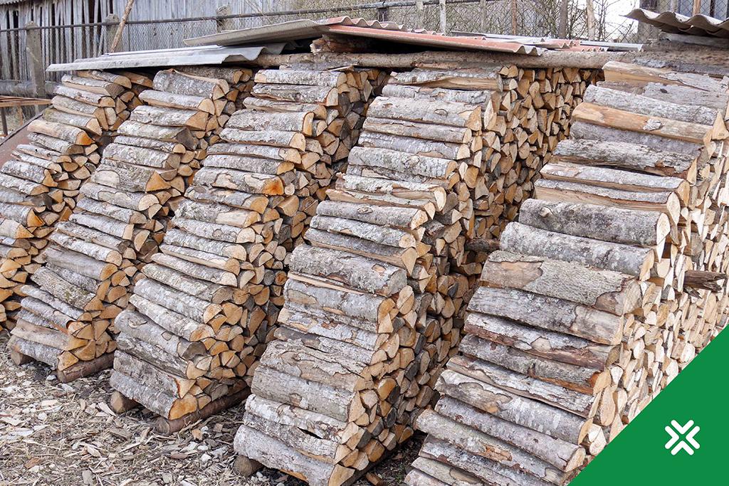Millest sõltub küttepuu hind Metsaühistu