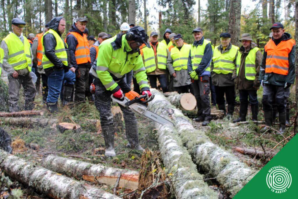 Metsaühistu liikmemaks